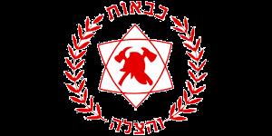 לוגו כבאות והצלה